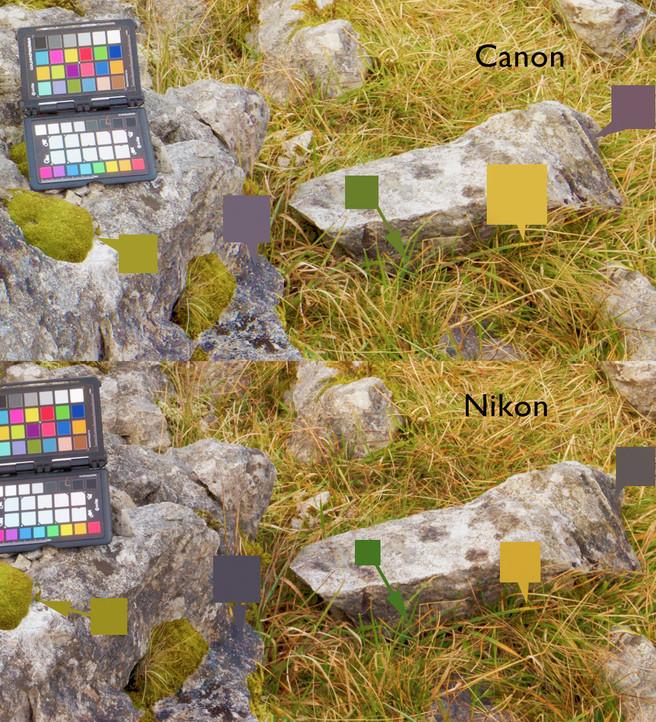 nikon-vs-canon-srgb-satched