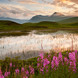The-Black-Mount-over-an-un-named-lochan,-Rannoch-Moor-06071652_640x1096