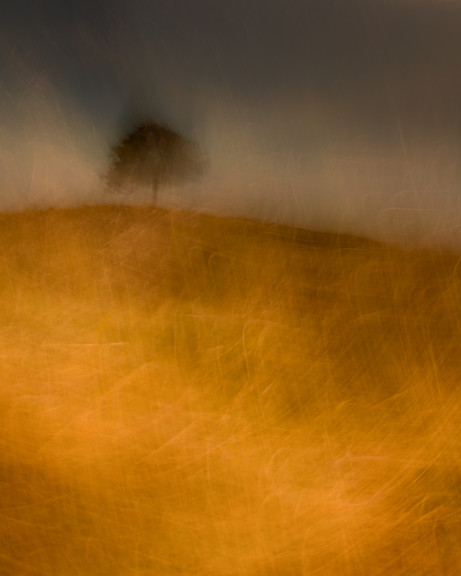 Doug Chinnery Intentional Camera Movement Webinar