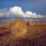 Near Stonehenge, Wiltshire