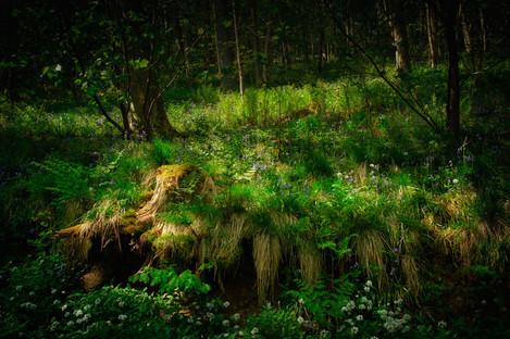 Riccaldale Springtime - by John Clifton