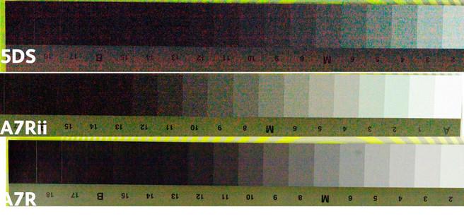 100-shadows-ppauto-manual-crop