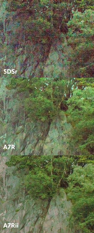 So sức mạnh cảm biến Sony A7r Mark II và Canon 5Dsr - 85016