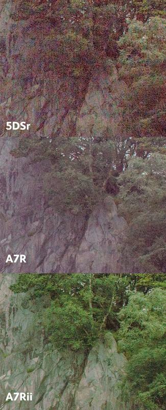 So sức mạnh cảm biến Sony A7r Mark II và Canon 5Dsr - 85015