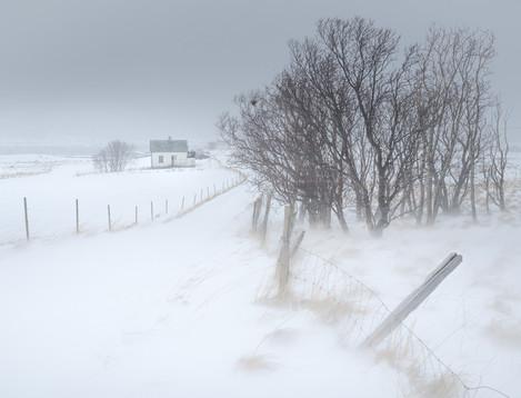Kvalnes blowing snow 2048