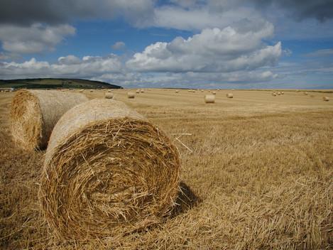 Hay Bales - possible mood shot