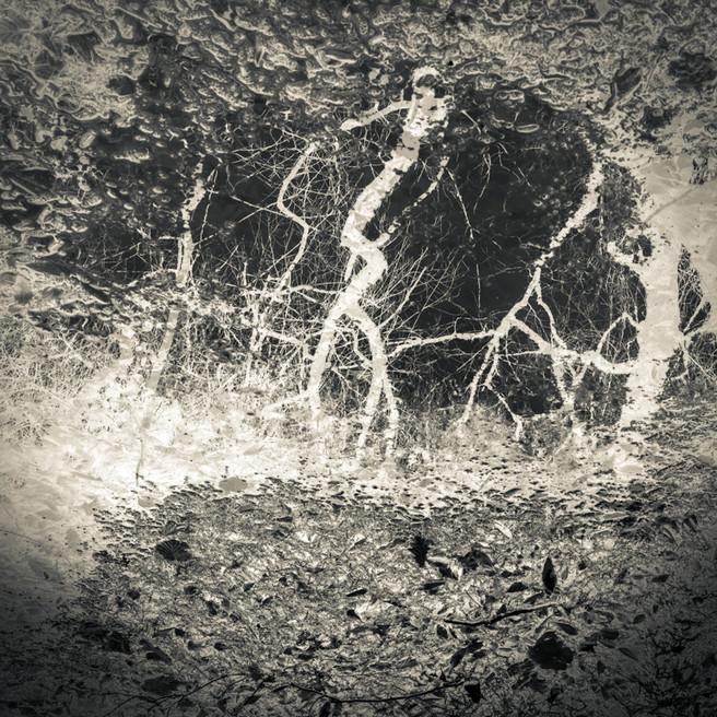 Travels in a Strange Land : Dark Spaces #9