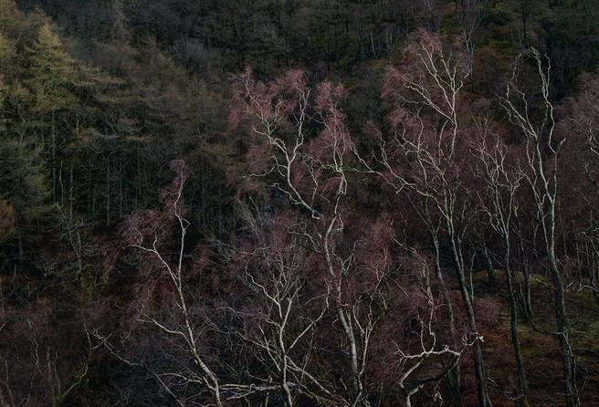 Shepherd's Crag, Borrowdale, Tim Parkin website