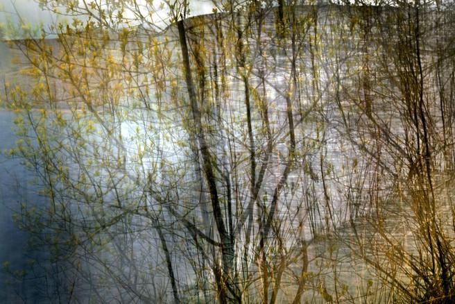 Goyt Valley, Peak District, UK, Peter Murray, website