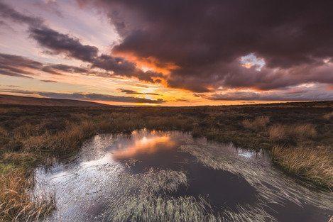 long-mynd-wildmoor-above-pools-dusk-feb-33