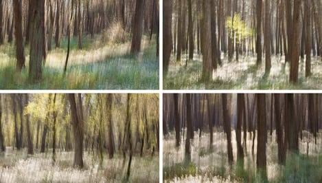 Charlotte Bellamy landscape photographer